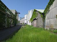 180429shimizu.jpg