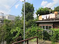 170909kawasaki1.jpg