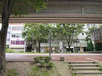 171002hamamatsu2.jpg