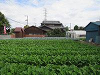 171004funabori1.jpg