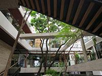 180812The49-terrace1.jpg